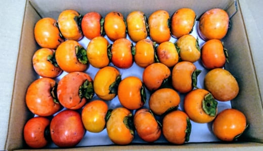 加熱時間数分の簡単な柿のジャムを作りました