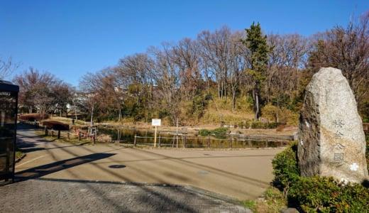 池と雑木林がある桜の名所「桜台公園」(全遊具の写真・トイレ情報あり)
