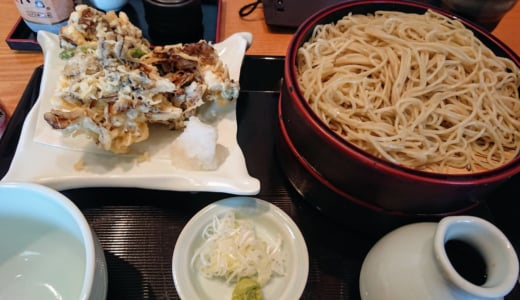 橋本駅からすぐ!行列ができる「蕎麦 ひのや」の天ぷらはサクサクでした!
