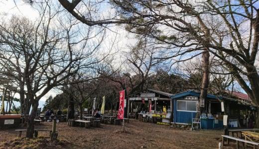 お正月の高尾山、たくさんの人で大混雑でした!(2020年1月2日)(中編)