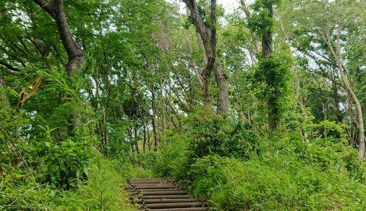十日市場駅から徒歩15分!豊かな自然の中を散策できる「新治市民の森」(駐車場・駐輪場情報有)